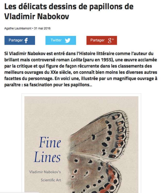 fineLinesFrance